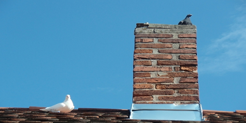 What every homeowner should know about Chimney repairs