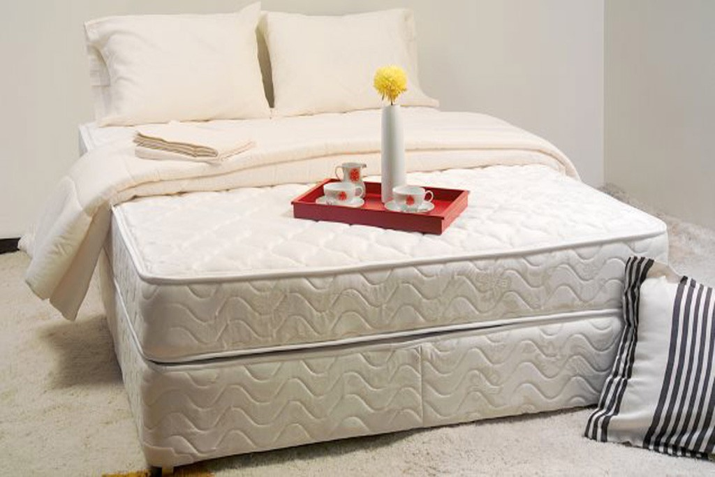 How to clean a bed or mattress DIY Helpful Tips and Ideas