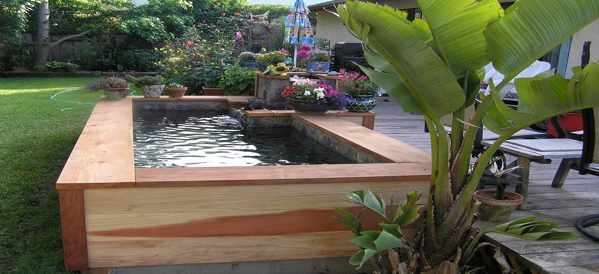 Garden design tips for small ponds you should know
