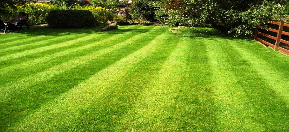 Keeping the lawn aerated